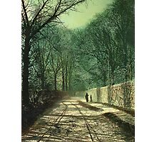 Tree Shadows on the Park Wall, Roundhay, Leeds, 1872  Photographic Print