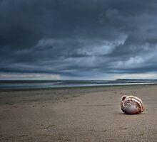 Distant Storm by shuttersuze75