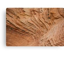 rich color and texture Canvas Print