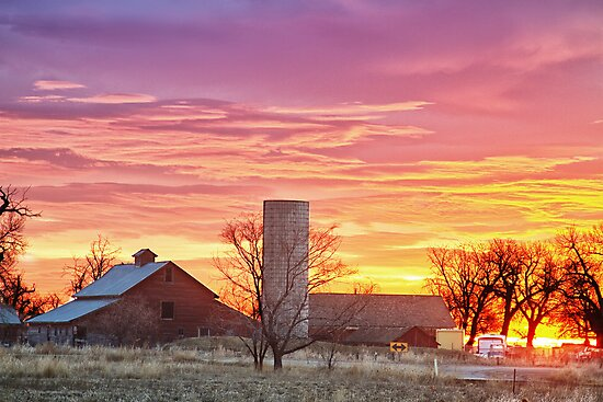 Early Country Morning Sunrise by Bo Insogna