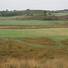 Vermont Panorama by Yuri Lev