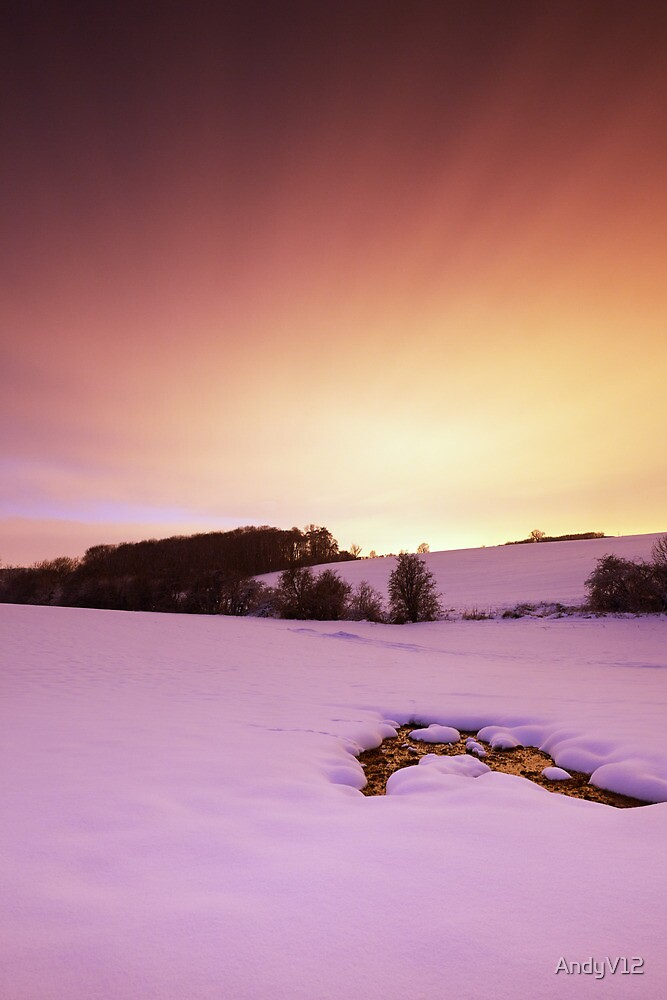 Frozen Assets by Andy Freer