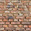 Old brick wall by Harald Walker