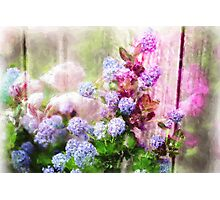 Floral Merge 11 Photographic Print