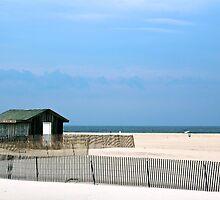 Jones Beach, Long Island by Danail Tanev