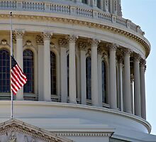 US Capitol by Danail Tanev
