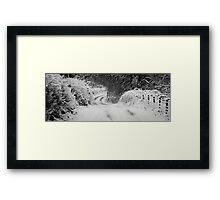 Woodland Bend Framed Print