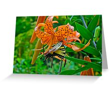 Tiger Swallowtail Butterfly and Turk's Cap Lily Wildflower Greeting Card