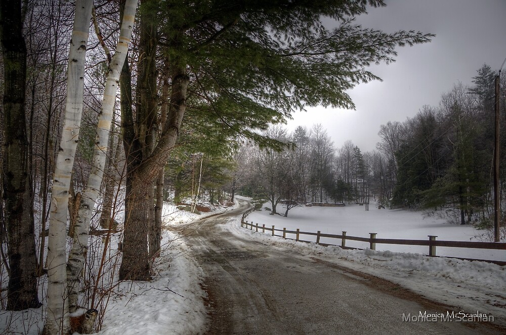 Coming Home in Winter by Monica M. Scanlan