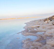 Israel, Dead Sea, salt crystalization Sticker
