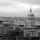 St Paul's Cathedral by KarenM