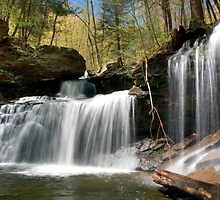 New Beginnings At R. B. Ricketts Waterfall by Gene Walls