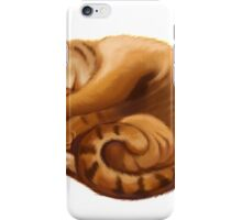 The Big Cat Sleeps into a Ball iPhone Case/Skin