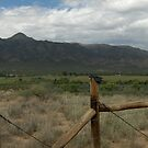 Rustic Fence by charlie81dbz