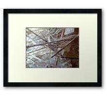 Sticks And Stones (Rutilated Quartz) Framed Print