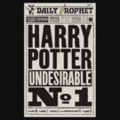 Harry Potter in Daily Prophet by hunekune