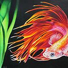 Betta fish by lanadi