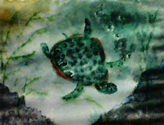 Sea Turtle, watercolor by Anna  Lewis