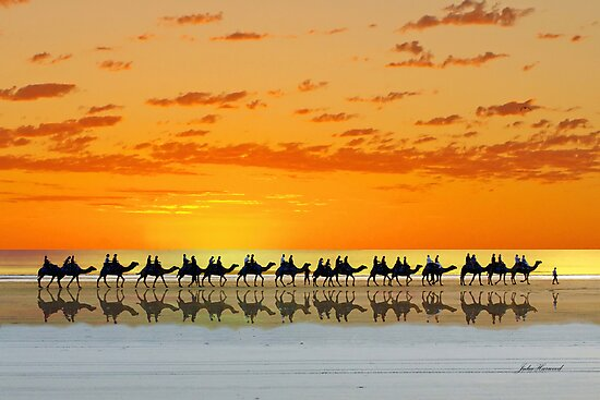 Cable Beach, Broome by Julia Harwood