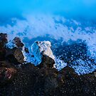The Blue Lagoon by Pippa Carvell