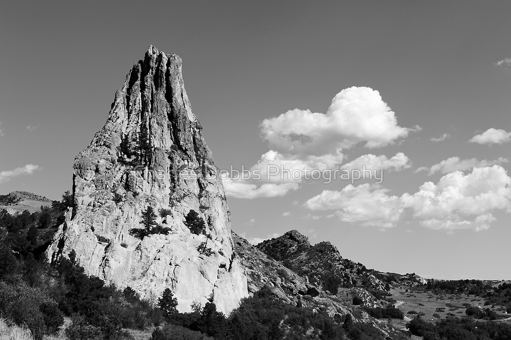 IN-SPIRE-D by Charles Dobbs Photography