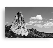 IN-SPIRE-D Canvas Print