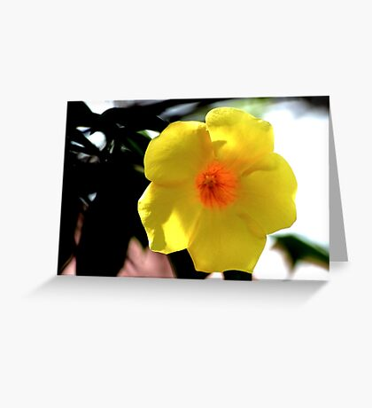 Yellow is the color of the day Greeting Card