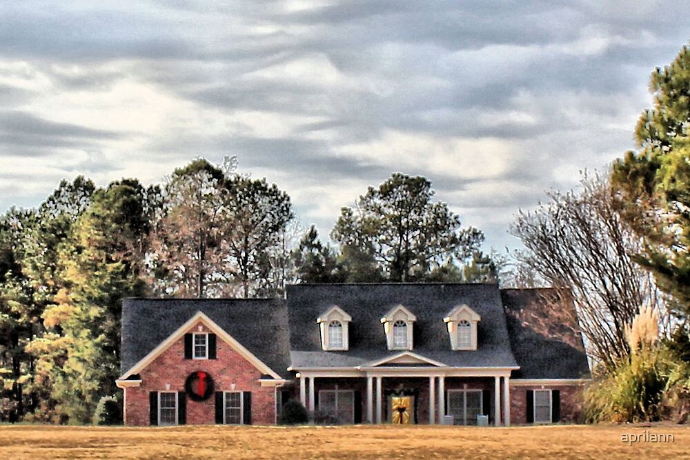 Christmas in North Carolina by aprilann