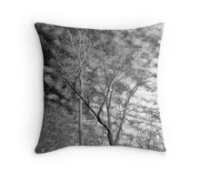 Trees with moon -  Ottawa National Wildlife Refuge Throw Pillow