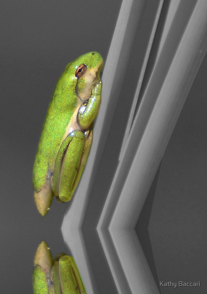 Newly Hatched Tree Frog - Selective Color by Kathy Baccari