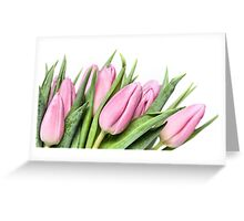 Tulips.... my first this year! Greeting Card
