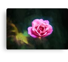 Pink Rose (GO2) Canvas Print
