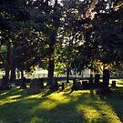 Pisgah Churchyard I by John Carey
