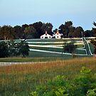 Calumet Fences I Lexington by John Carey