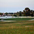 Calumet Fences III Lexington by John Carey