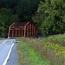 Central Bridge I by John Carey