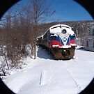 Polar Express II by John Carey