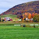 Autumn Upstate I by John Carey