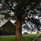 Woodford Barn I by John Carey