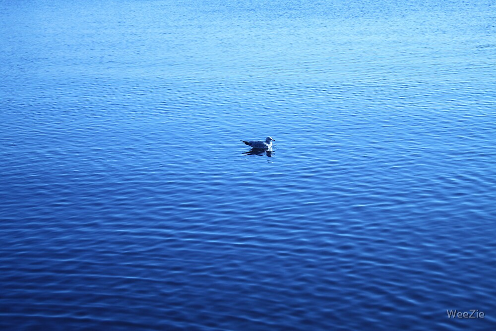 Swimming Alone by WeeZie