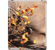 Hide 'n' Seek iPad & iPhone Covers iPad Case/Skin
