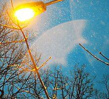 Streetlight by emcreates