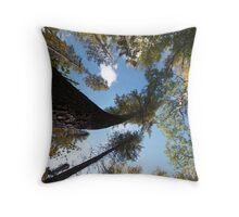 Big Pines Algonquin Park, Northern Ontario Throw Pillow