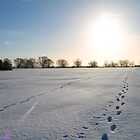 Footprints in the Snow by rubyrainbow