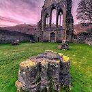 Welsh Abbey  by Adrian Evans