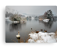'Swan Lake', Rydal Water, Lake District Canvas Print