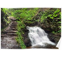 On The Trail Overlooking Mohican Falls Poster