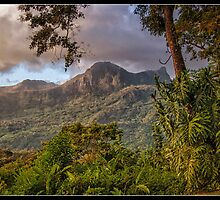 Dawn on Mt. Picachu by Victoria Jostes