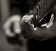 Pressed Strings by timothyedward