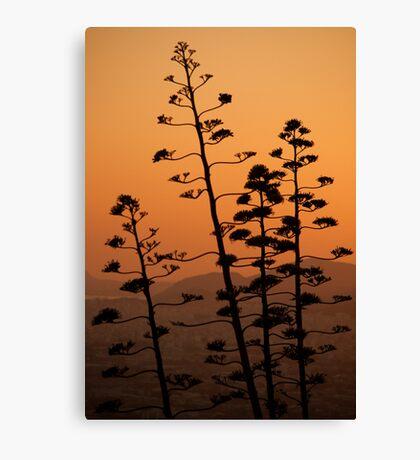 Mount Lycabettus Sunset Canvas Print